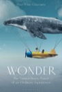 Book: Wonder: The Extraordinary Power of an Ordinary Experience